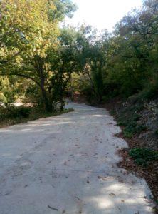 Дорога к Кипарисовому озеру